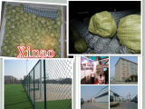 Frontière de sécurité enduite enduite en plastique du maillon de chaîne Fence/PVC