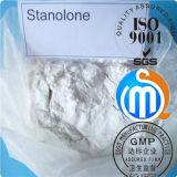 Polvere Stanozolol Winstrol degli steroidi anabolici di perdita di peso