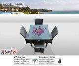 Patio-Weidenrattan-Möbel Kd Zelle-Stuhl für im Freien