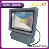 PFEILER Driverless wasserdichtes IP65 20W LED Flut-Licht (SLEFLP20W)
