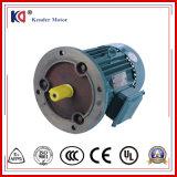 工場価格のAC誘導の非同期電気モーター