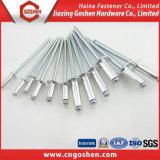 鋼鉄固体ステップリベットのリベットのナット/ブラインドのリベットの空のリベットのナット