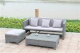 정원 Furniture의 New 디자인을%s 가진 옥외 Rattan Sofa