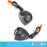 Nachtsicht wasserdichte CCTV-Kamera, HD CCD-Abdeckung und Videokamera mit 700tvl Xy-1204
