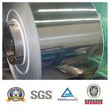 Steel di acciaio inossidabile Metal Coil (304/310S/321/3216/316L/904L)