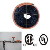 pour le câble chauffant de pipe de la vente 9FT CSA