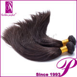 Langes Machine zu Braid Yaki Straight Malaysian Virgin Hair