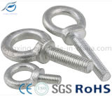 Perni ad occhio dell'acciaio inossidabile di alta qualità/acciaio al carbonio, (DIN580 DIN582 DIN444 JIS1168)