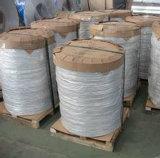 Cercle d'aluminium de dc 8011 pour des bouilloires de thé avec la qualité