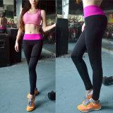 La buona qualità risolve rapidamente l'usura di donne asciutta dei pantaloni di yoga