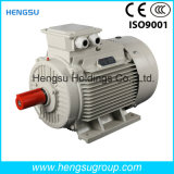 Электрический двигатель индукции AC Ye3 1.1kw-8p трехфазный асинхронный Squirrel-Cage для водяной помпы, компрессора воздуха
