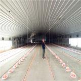 Het moderne Ontworpen Geprefabriceerde Huis van de Landbouw van het Gevogelte met de Volledige Vastgestelde Apparatuur van het Gevogelte