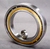 작은 Noise High Speed Ceramic Angular Contact Ball Bearing 130bnr10