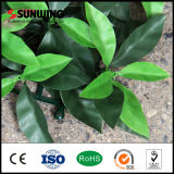 LandscapingのためのSunwing Cheaper Plastic Artificial Boxwood Hedge Fence