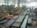 Placa de acero del molde (638B)