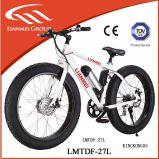 36V Lithium Battery 350W Motor Fat Mountain Bike