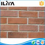 Matériau de construction artificiel de placage de mur de briques de culture (18027)