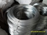 Iron galvanizzato Wire Made in Cina è su Hot Sale