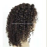 grande perruque brésilienne de lacet de cheveux humains de cheveu de l'enroulement 8A pleine