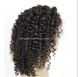 brasilianisches grosses Haar-Menschenhaar-volle Spitze-Perücke der Rotation-8A