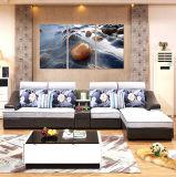 Jeu de sofa de meubles de salle de séjour de modèle moderne