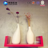 Специальная ваза конструкции для украшения семьи