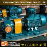 Ycb Spezialgebiets-Pumpe mit Heizungs-Umhüllung