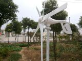 off Grid Wind Power Generator 600W für Remote Area (100W-20kW)
