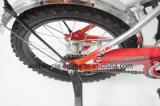 China-Fahrrad der gute QualitätsW-1626 von Hangzhou