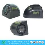 Macchina fotografica impermeabile del CCTV di visione notturna, cupola del CCD di HD e videocamera con 700tvl Xy-1204
