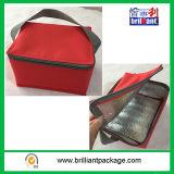 Sacco non tessuto isolato del dispositivo di raffreddamento personalizzato vendita calda pratica (B5-2)