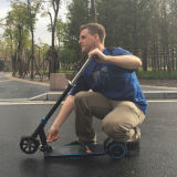 Lithium Batteryの自己Balance 6.5 Inch Two Wheel Electric Scooter