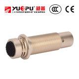 Enregistrement MIC de microphone de condensateur