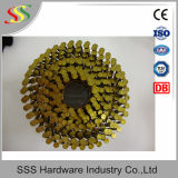 Un fornitore cinese di chiodo della bobina del collegare da 15 gradi