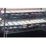 Luz al aire libre del paquete de la pared de la alta calidad LED con el programa piloto mencionado de la UL