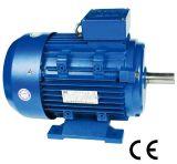 мотор AC 0.12~200kw электрический трехфазный с Ce