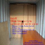 ISO9001: Poplar 2008 de madeira da cor da grão da colagem da classe E2 do AAA da mobília 100% da placa de partícula da cara da melamina MDF/Melamine da cor da faia de China