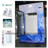 Indoor Bagged Ice Storage Bin Ice Freezer with Glass Door
