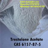 Сырцовый стероидный ацетат CAS 6157-87-5 Trestolone порошка для приобретать мышцы