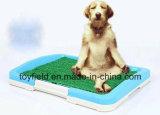 كلب [بوتّي] صينية [بورتبل] محبوب تدريب كلب مرحاض