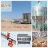 Free DesignのChickenのための自動Poultry Farm Machines