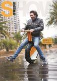 Neues konzipiertes 17 Zoll 2016 Selbst-Balaing einer Rad elektrisches Motorycle