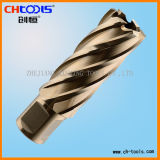 Cortador do furo do aço de alta velocidade (pata) de Weldon (DNHX)