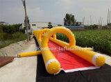 ベストセラーのGaint水スライド都市、販売(RB6081)のための長いスライド