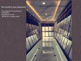 30*60cm o mattonelle personalizzate della parete interna per la vita della stanza da bagno o l'alta qualità della sala da pranzo