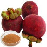 Alfa Mangostin 20%, 40%, 90% Extracto de mangostán