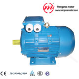 2hma-Ie2 (EFF1) Series High Efficiency Electric Motor