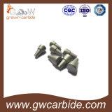 Le carbure de tungstène a personnalisé des outils/moulage