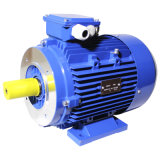 Поляк 2 Aluminium Ie3 Electric Three Phase Induction Motor (3HMA-801-2-0.75)