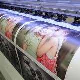 Imprimante dissolvante multicolore d'Eco avec la tête d'impression de Dx 5